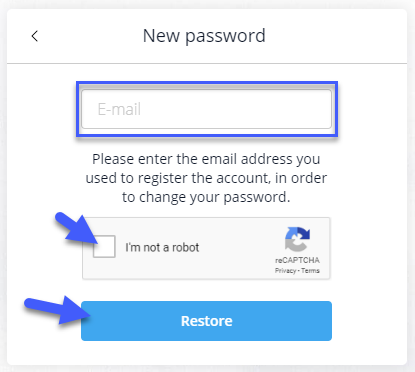 Changing password via e-mail